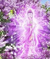 llama violeta kwan yin